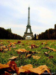 Autumn In Paris #Travel #Pinterest #Inspiration