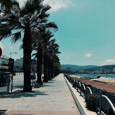 A great saturday. Goodmorning. #unangeloinviaggio  Edit with @vscoG3  #italia #italy #campania #salerno #agropoli #wonderful #great #vsco #vscocam #vscoitaly #photo #photooftheday #photography #landscape #landscape_lovers #landscape_captures #landscapephotography #followme #seguitemi #travel #traveling #summer #holiday #buongiorno #goodmorning #seafront