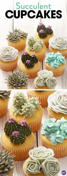 how to make these beautiful succulent cupcakes that taste as good as they look! Get the full how-to at .Learn how to make these beautiful succulent cupcakes that taste as good as they look! Get the full how-to at . Cupcake Recipes, Cupcake Cakes, Dessert Recipes, Cupcakes Kids, Cool Cupcakes, Flower Cupcake Cake, Kid Cakes, Delicious Cupcakes, Cupcake Icing