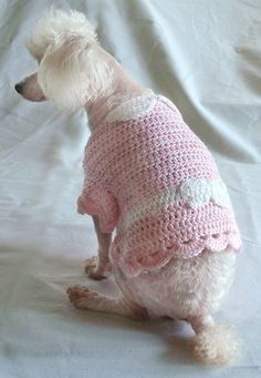 Crochet Pattern  Dog Sweater Dress Shirt by OnceUponAPoodle, $4.95