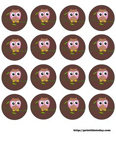 pink owl labels