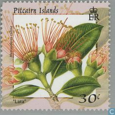 Pitcairn - Flowers 2000