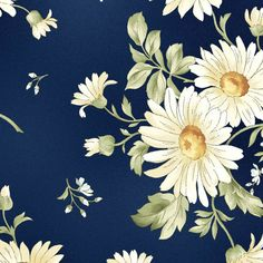 Daisies in Navy  8510-N  GENTLE BREEZE by Jan Douglas  for Maywood Fabrics - By the Yard