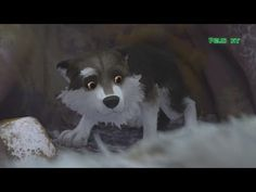 Colmillo Blanco 2019 - Pelicula Completa Español Latino de Animacion Familiar HD [Editado] - YouTube Video, Husky, Youtube, Dogs, Painting, Animals, Adventure Movies, Cute Pets, Theater