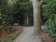Thieles  Garten ... Baum, Säule, Gemäuer / Copyright Horst H. Barsuhn; Bremerhaven (Germany)