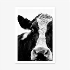 Cow Print Farm Animal Prints Scandinavian Print Nature