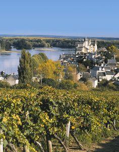 Château de Montsoreau © D.Drouet-CDTA