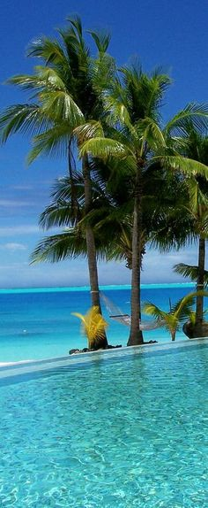 Infinity pool in Bora Bora