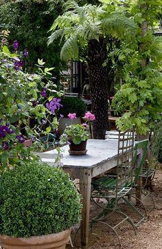 Wanneer het maar kan ben ik in mijn tuin te vinden, soms om rustig te genieten maar vaak ook om lekker in te rommelen. Ik ben dan ook gek o...