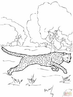 Jaguar Drawing And Coloring Page