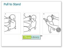Facilitating Pull to Stand in Pediatrics
