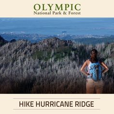If you love to hike, Hurricane Ridge is a must when visiting Olympic National Park. Learn about hiking at Hurricane Ridge and come prepared!