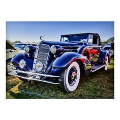 Vintage Cars/Trucks Poster