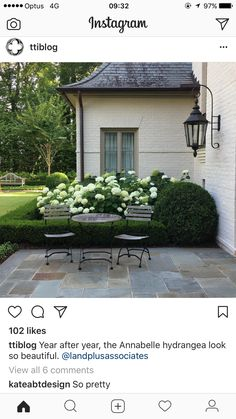 Year after year, the Annabelle hydrangea look so beautiful. Outdoor Rooms, Outdoor Gardens, Outdoor Living, Annabelle Hydrangea, Slate Patio, Design Jardin, Front Yard Landscaping, Boxwood Landscaping, Boxwood Hedge