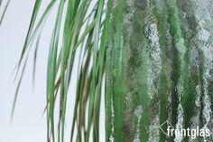 Kathedral kleingehämmert weiß  www.frontglas.de #Glas #Glass