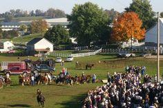 Charm Days Amish Festival, Charm, Ohio