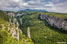 Lime columns in Vela Draga Canyon, Ucka Nature Park, Istria, Croatia - Buy this stock photo and explore similar images at Adobe Stock Columns, Vector Design, Adobe, Vectors, Lime, Stock Photos, Explore, Park, Nature