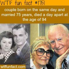 A true love story - WTF fun facts