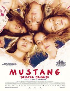 Ver Mustang: Belleza salvaje (2015) Online - Peliculas Online Gratis