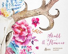 This set of 2 high quality hand painted watercolor skulls with antlers and flowers in Hires. Perfect graphic for wedding invitations, greeting cards, photos, posters, quotes and more. ----------------------------------------------------------------- INSTANT DOWNLOAD Once payment is cleared, you can download your files directly from your Etsy account. ----------------------------------------------------------------- This listing includes: 1 x skull with antlers and flowers in PNG with tra...