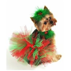 The perfect red and green Christmas tutu for dressing your dog  for the Holidays. This knotted tutu has layers and layers of red and green tulle. Sizes to fit small to large dogs.