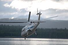 Peregrine, Fighter Jets, Aircraft, Fishing, Seasons, Blog, Pilgrim, Aviation, Plane