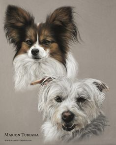 Exciting Learn To Draw Animals Ideas. Exquisite Learn To Draw Animals Ideas. Creature Drawings, Animal Drawings, Art Drawings, Dog Artist, Abstract Animals, Watercolor Canvas, Color Pencil Art, Pastel Art, Dog Portraits