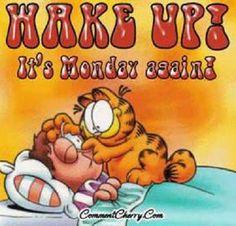 Garfield Wake up!