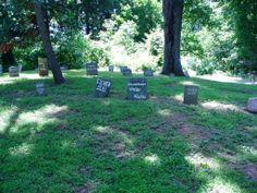 Pet Cemetery ~ Duke Farms, NJ