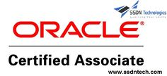 oracle dba corporate training,Oracle certification training delhi,