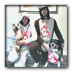 small dog costumes