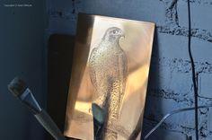 #falcon #AdamPoltorak #copperplate