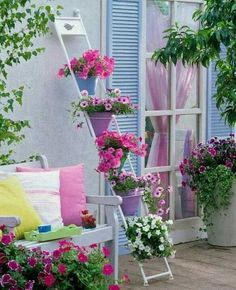 Love the ladder with potted plants. Would probably prefer a rustic ladder and orange and purple flowers.
