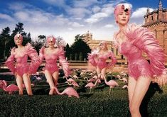 [PinkFlamingo.jpg]