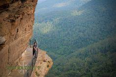 Visit the Blue Mountains, Australia | TerraDrift