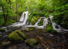 Forest Waterfall - A waterfall in the lush green forest. Forest Waterfall, Lush Green, Waterfalls, Norway, Outdoor, Outdoors, Stunts, Outdoor Games, Outdoor Living