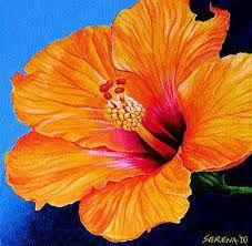 Image Result For Close Up Flower Painting Hibiscus Impression Flower Painting Flower Art Art Painting Oil