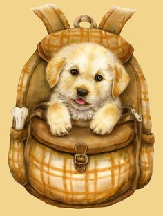 The Mountain Puppy Backpack Adult T-shirt L, Size: Large, Green Little Puppies, Cute Puppies, Cute Dogs, Dogs And Puppies, Animals Images, Animal Pictures, Cute Pictures, T Shirt Chien, Baby Animals