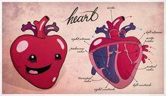 Happy Organs Anatomy by Katalin Berinkey, via Behance
