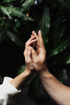 Inspiration for an Engagement Session at Iao Valley in Maui. Wedding Couple Poses Photography, Couple Photoshoot Poses, Hand Photography, Couple Posing, Couple Shoot, Engagement Photography, Engagement Session, Creative Couples Photography, Friend Photography