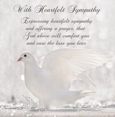 Condolence Deepest Sympathy Cards With Beautiful Messages. Share these lovely sympathy, condolences cards with grief stricken family and friends. Sympathy Quotes For Loss, Sympathy Card Sayings, Words Of Sympathy, Sympathy Wishes, Sympathy Verses, Condolences Quotes, Condolence Messages, Deepest Sympathy Messages, In Loving Memory Quotes