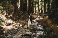 An elopement at Julia Pfeiffer Burns State Park in Big Sur, California. A magical place where you can walk through redwood forests and on the rugged coast.