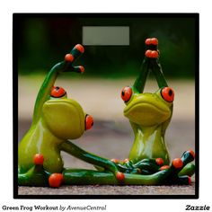 Sport Gymnastics Frog Funny Fitness F Funny Animals, Cute Animals, Perfect Physique, Funny Frogs, Green Frog, Frog And Toad, Frog Frog, High Intensity Interval Training, Physical Fitness