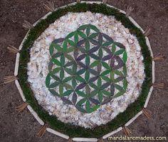 "Mandala Nomadess is a ""nomadic mandala maker"" creating mandala art using natural objects found in nature as her art medium. Radiant Energy, Color Shapes, Flower Of Life, Fuzz, Mandala Art, Medium Art, Blackberry, Sticks, 3 D"