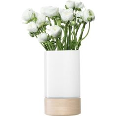 LSA Lotta vase/lantern with ash base H23cm in white (1 570 UAH) ❤ liked on Polyvore featuring home, home decor, floral decor, fillers, plants, flowers, decor, flower home decor, white home accessories and lsa international
