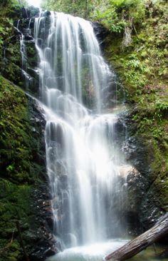 Marin, Ca waterfalls