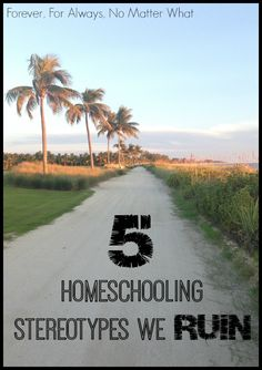 Check out the homeschooling stereotypes that DO NOT apply to my family!