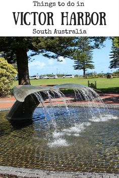 Looking for things to do in Victor Harbor in South Australia? Here are some great ideas. Adelaide South Australia, Australia Beach, Visit Australia, Western Australia, Australia Travel Guide, New Zealand Travel, Mexico Travel, Spain Travel, Holiday Places