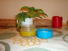 Howto make a cannabis root oil cream to use as painrelief