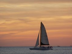 A silhouette of the Kai Lani from Clearwater Beach